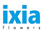 ixia-flowers
